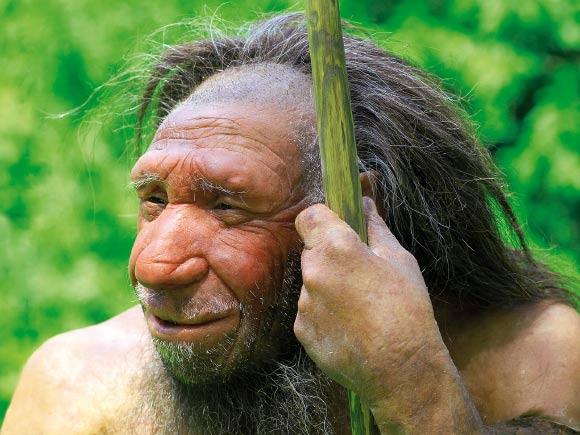 son neandertal
