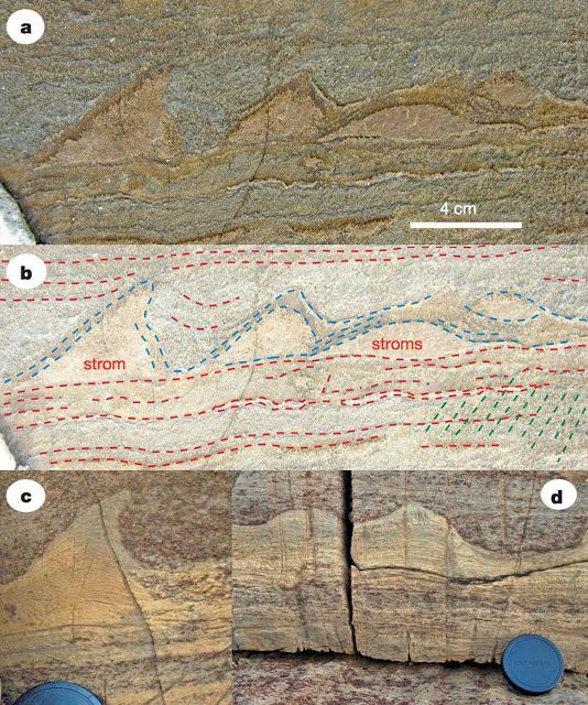 greenland fosil tabakalanması