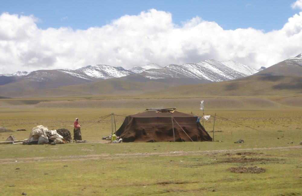Tibet Namtso yakınlarındaki kırsal göçebe kampı,2005