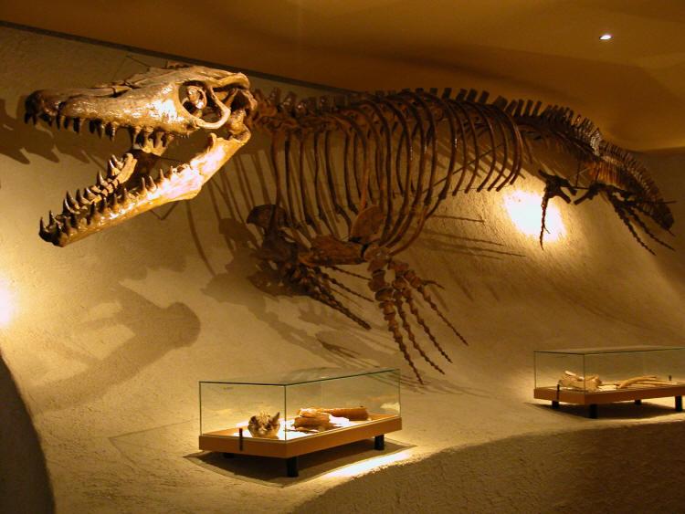 Evinizin Dekorasyonunda Dinozor İzleri Olsun İster Miydiniz?