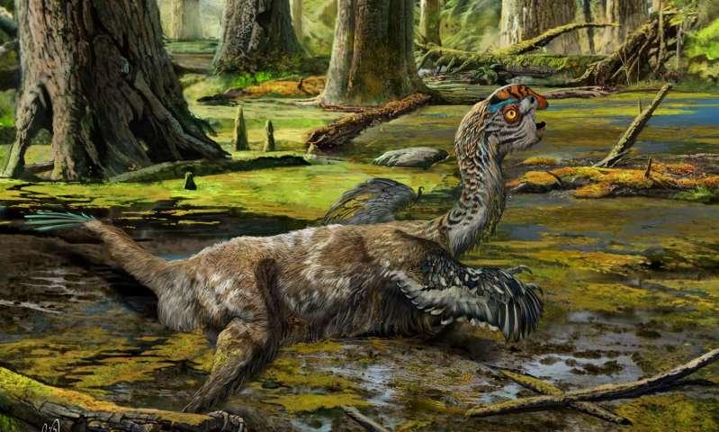 Yeni Dinozorların Keşfi Hayvan Evriminin Kalan Son Bilinmezlerine Işık Tutuyor