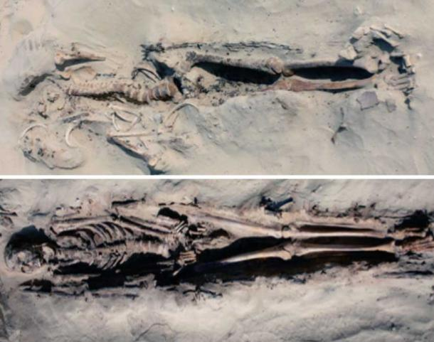 firavun-iskeleti