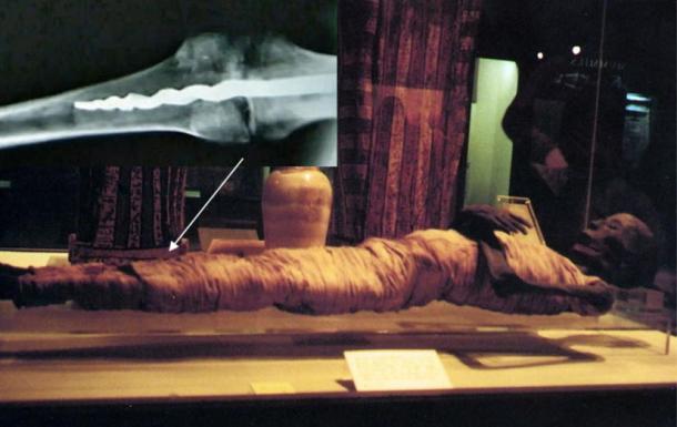 mumya-muzesi