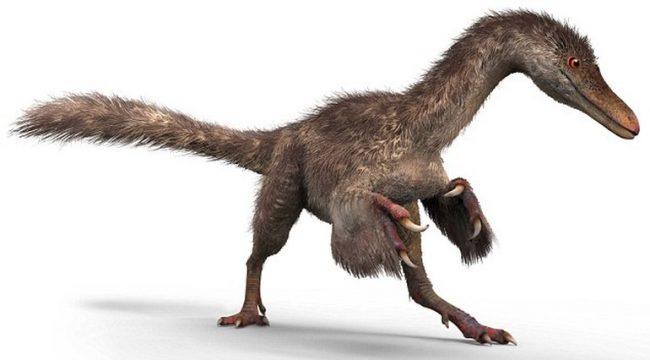 dinozor-2