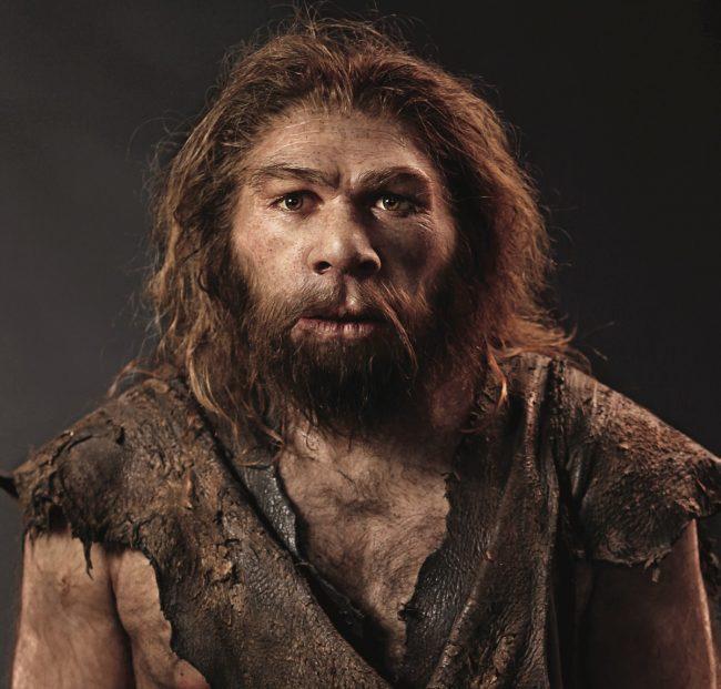 neandertal-canlandirma