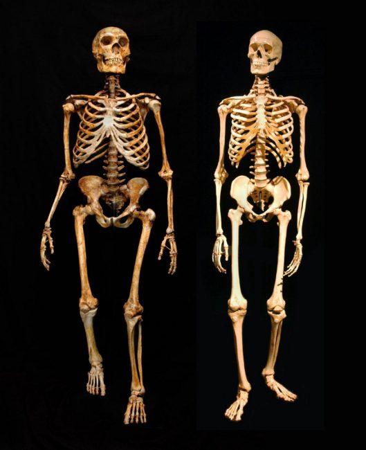 neandertal-iskeler